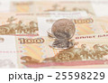 Russian currency, rouble 25598229