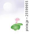 蓮の花と霞 25599955
