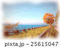 北海道 支笏湖 25615047