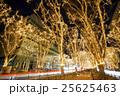 イルミネーション 光のページェント 並木道の写真 25625463