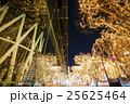 イルミネーション 光のページェント 並木道の写真 25625464