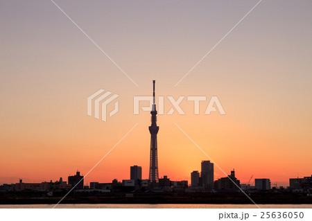 荒川土手から眺める東京スカイツリー 夕景 25636050