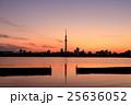 荒川土手から眺める東京スカイツリー 夕景 25636052