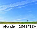 青空 空 すじ雲の写真 25637380