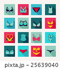 Fashion Different types icons of bras and pants 25639040