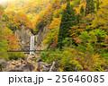 苗名の滝の紅葉 25646085