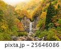 苗名の滝の紅葉 25646086