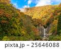 苗名の滝の紅葉 25646088