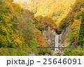 苗名の滝の紅葉 25646091