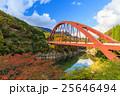 奥裾花渓谷の紅葉 25646494
