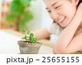 サボテン 植物 観葉植物の写真 25655155
