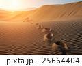 desert 25664404