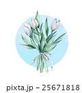 芽 蕾 花の蕾のイラスト 25671818