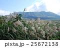 三原山とすすき10月 25672138