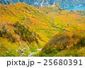 富山_黒部大観峰紅葉 25680391