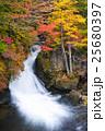 竜頭の滝 滝 奥日光の写真 25680397