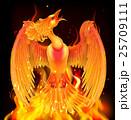 Phoenix Bird Rising From Ashes 25709111