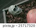 ハロウィン 25717320