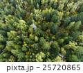 森林の空撮(真俯瞰) 25720865