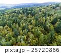 北海道の森林(中山峠付近) 空撮 25720866