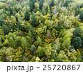 森林の空撮 25720867