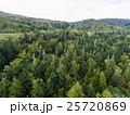 北海道の森林(中山峠付近) 空撮 25720869