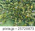 森林の空撮(真俯瞰) 25720873