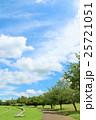夏の青空と公園の風景 25721051