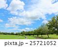 夏の青空と公園の風景 25721052