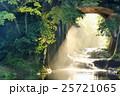 千葉県 濃溝の滝 朝の陽射し 25721065