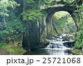 滝 濃溝の滝 川の写真 25721068