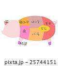 豚肉の部位 25744151