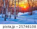 ウィンター ウインター 冬の写真 25746108