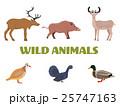 Wild forest animals with wild boar, deer, duck etc 25747163