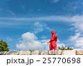 三重県 伊賀上野城の石垣に現れた忍者 25770698
