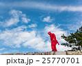 三重県 伊賀上野城の石垣に現れた忍者 25770701