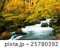 奥入瀬渓流の紅葉 阿修羅の流れ 25780392