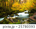 奥入瀬渓流の紅葉 阿修羅の流れ 25780393