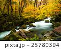 奥入瀬渓流 紅葉 渓流の写真 25780394