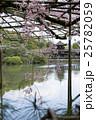 平安神宮栖鳳池、満開の枝垂桜の向こうに泰平閣 25782059