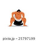 すもう 相撲 ベクトルのイラスト 25797199