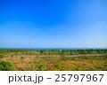 空撮 海 白子町の写真 25797967