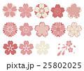桜 ベクター セットのイラスト 25802025