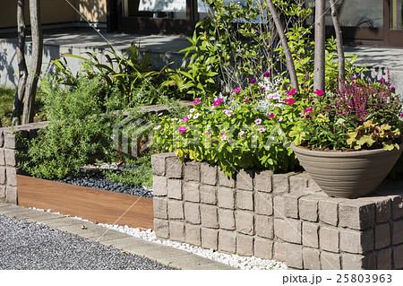 道路沿いに造った小さな花壇 25803963