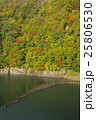紅葉 奥裾花渓谷 渓谷の写真 25806530