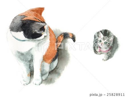 三毛猫とチビ猫 25828911