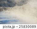 樹氷と霧に包まれたタンチョウのねぐら 25830089