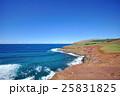 イースター島 青空 海の写真 25831825