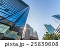 高層ビル 新宿 オフィスの写真 25839608