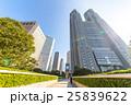 高層ビル 新宿 新緑の写真 25839622